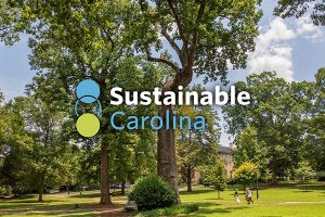 Sustainable Carolina logo over a view of the Davie Poplar in McCorkle Place.